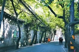 春日City Walk推薦!找個陽光燦爛的日子,去走走路